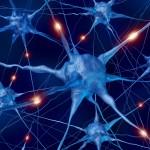 Creato il neurone artificiale