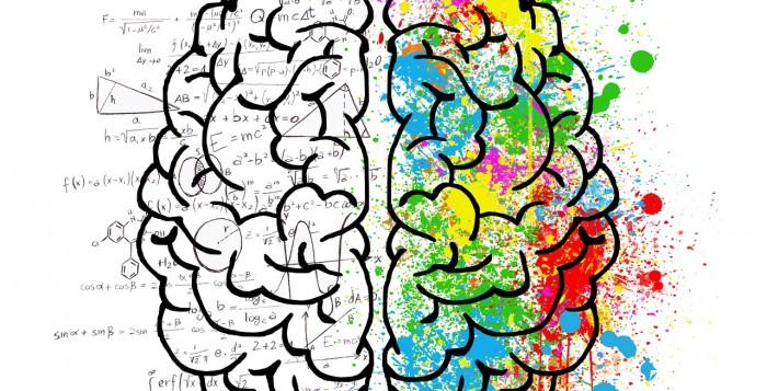 Le modificazioni cerebrali indotte dalla psicoterapia