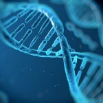 Editing genetico: nuove scoperte ne incrementano l'efficacia