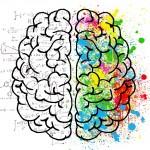 Il falso mito dell'emisfero cerebrale logico e di quello creativo