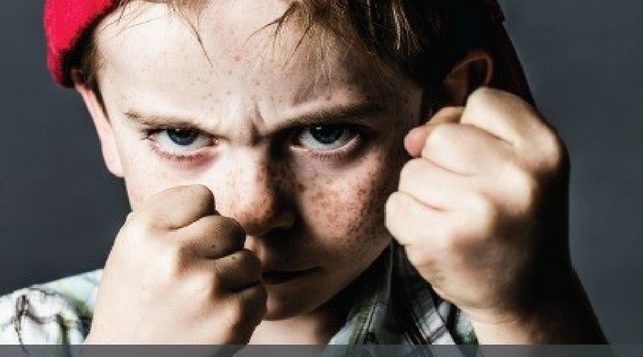 Non è una scuola per bulli strategie di prevenzione del bullismo, cyberbullismo e bullismo omofobico